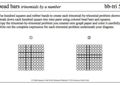 6-9-MSC-bb-tri5-Bead-Bars-trinomials
