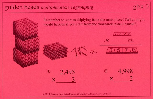 MSC gbx3 Golden Bead multiplication